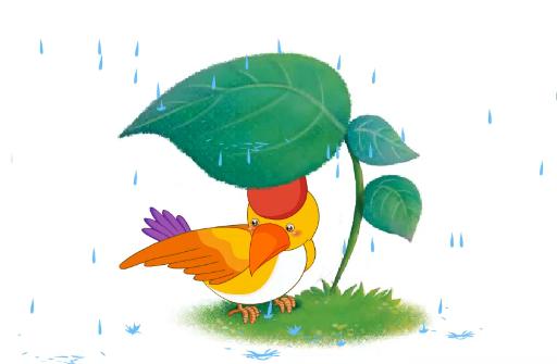 儿童故事下雨了